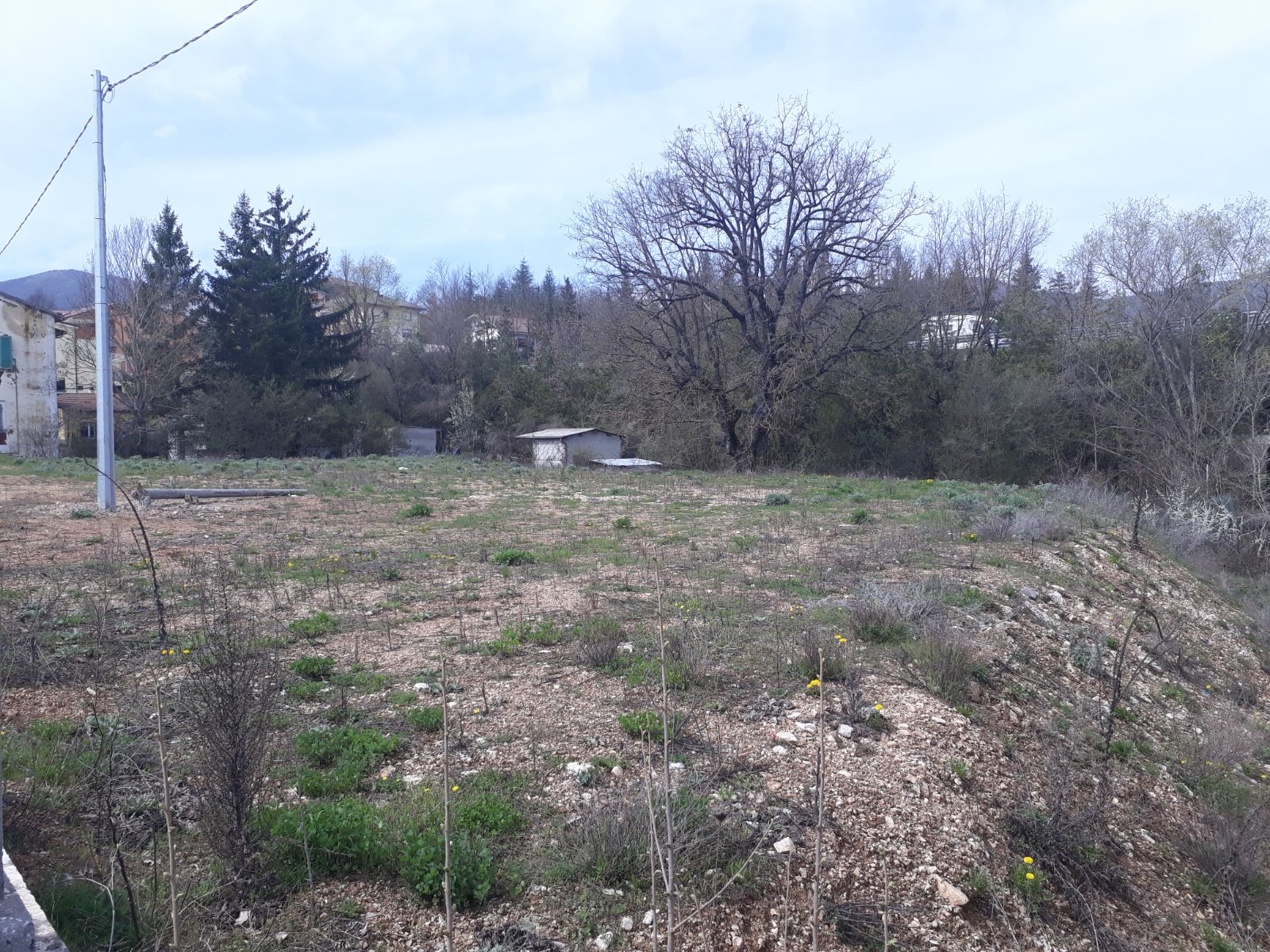 VENDE TERRENO COMMERCIALE – SCOPPITO